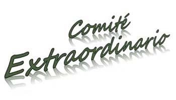 Reunión Extraordinaria Comité 4 de Diciembre